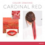 COLOR CRAVING CARDINAL RED - 150ml
